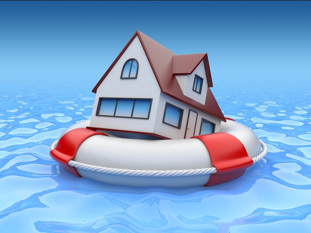 house floating on lifebuoy