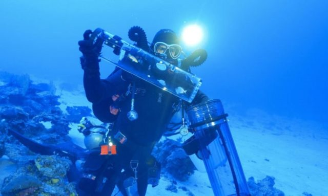 a diver in deep sea capturing fish with new technology Submersible Chamber for Ascending Specimens (SubCAS)